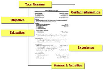 what is a typical resume format knowledge